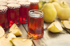 Homemade Quince Jelly Stock Images