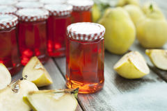 Homemade Quince Jelly Stock Photography