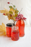 Homemade quince juice. still-life Stock Photography