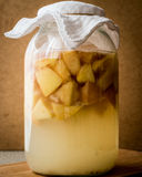 Homemade Quince vinegar or juice in bottle. Royalty Free Stock Image