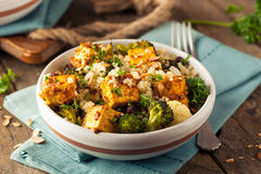 Homemade Quinoa Tofu Bowl. With Roasted Veggies and Herbs Stock Images