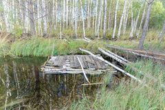 A homemade raft is moored to the bank of a forest river with trees among them. A homemade raft is moored to the bank of a forest river with trees among them royalty free stock image