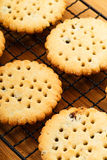 Homemade Raisin cookies Royalty Free Stock Photo
