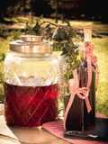 Homemade raspberry liqueur in front of garden. Photo shows aged homemade raspberry liqueur in front of garden background Stock Photography