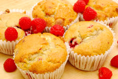Homemade raspberry muffins Stock Images