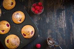 Raspberry Muffins Stock Images