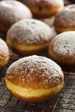 Homemade Raspberry Polish Paczki Donut Stock Image