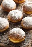 Homemade Raspberry Polish Paczki Donut Royalty Free Stock Image