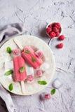 Homemade raspberry popsicles Stock Images