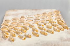 Homemade Ravioli with flour on wooden board. Homemade Ravioli with flour on big wooden board Royalty Free Stock Images