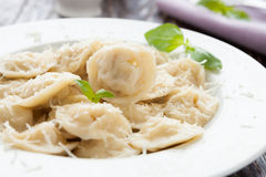 Homemade ravioli with meat and parmesan Stock Images