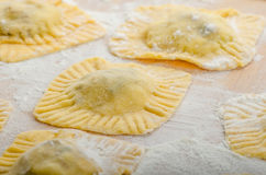 Homemade ravioli stuffed with spinach and ricotta Royalty Free Stock Photos