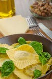 Homemade ravioli stuffed with spinach and ricotta Royalty Free Stock Photography