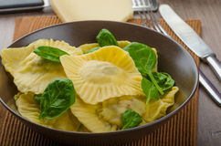 Homemade ravioli stuffed with spinach and ricotta Royalty Free Stock Images