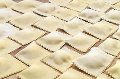 Homemade ravioli Stock Image