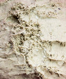Homemade raw bread texture. Homemade raw brown bread surface texture of before cooking Stock Image