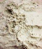 Homemade raw bread texture Stock Image