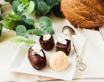 Homemade raw chocolate candy, bounty, Raffaello.Healthy vegan d. Homemade raw chocolate candy, bounty, Raffaello. Healthy vegan dessert.Healthy lifestyle and raw stock images