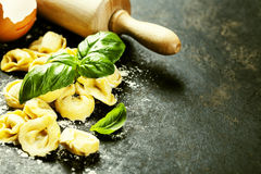 Homemade raw Italian tortellini and basil leaves Stock Photography