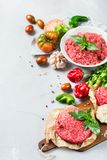 Homemade raw organic minced beef meat burger cutlet and vegetables. Healthy food, cooking concept. Homemade raw organic minced beef meat and burger steak cutlet royalty free stock photography