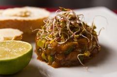 Homemade raw salmon tartar Royalty Free Stock Image