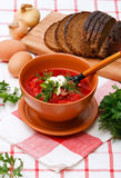 Homemade red borsch Royalty Free Stock Image