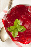 Homemade Red Cherry Gelatin Dessert Stock Photo