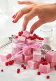 Homemade red currant marshmallows Royalty Free Stock Images
