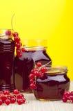 Homemade redcurrant jelly Royalty Free Stock Photo