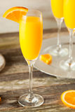 Homemade Refreshing Orange Mimosa Cocktails. With Champaigne Royalty Free Stock Photography