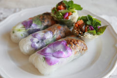 Homemade rice paper rolls with edible flowers. On white plate Royalty Free Stock Images