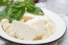 Homemade ricotta Royalty Free Stock Photos