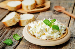Homemade ricotta with bread decorated with mint Stock Photo