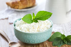 Homemade Ricotta cheese Royalty Free Stock Image
