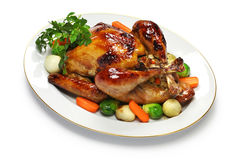Homemade roast turkey, thanksgiving christmas dinner Royalty Free Stock Photos