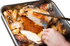 Homemade roasted chicken with potatoes isolated Stock Images