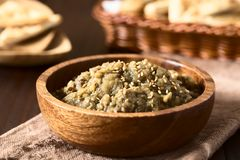 Roasted Eggplant Dip or Spread. Homemade roasted eggplant dip or spread, baba ganoush in the Mediterranean cuisine, with olive oil and sesame on top, homemade royalty free stock photos