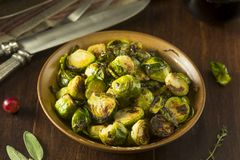 Homemade Roasted Green Brussel Sprouts. In a Bowl Royalty Free Stock Photos