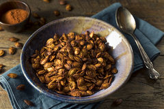 Homemade Roasted Spicy Pumpkin Seeds Stock Photography