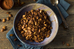 Homemade Roasted Spicy Pumpkin Seeds Royalty Free Stock Photo