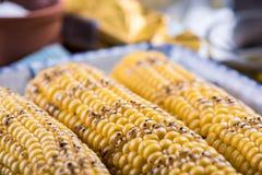 Homemade roasted whole corn cob Stock Photography