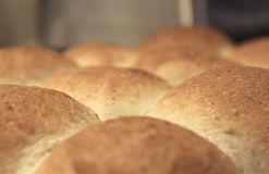 Homemade rolls fresh out of oven Stock Images