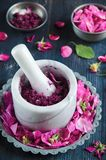 Homemade rose jam Stock Image