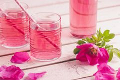 Homemade rose petal syrup. Made with fresh organic roses royalty free stock photo