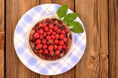 Homemade round chocolate cake with fresh wild raspberries and gr Royalty Free Stock Photography