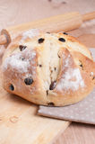 Homemade round bread with raisins Royalty Free Stock Images