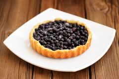 Homemade round tart with whole wild blueberries in square white Stock Photo