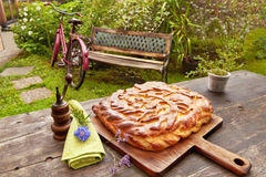 Homemade Russian pie outdoors Stock Images