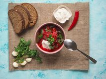 Homemade Russian, Ukrainian and Polish national soup - red borscht made of beetrot, vegetables and meat with sour cream. Homemade Russian, Ukrainian and Polish Stock Photos