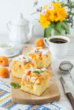 Homemade rustic apricot cake on a table. Homemade rustic apricot cake on a summer table royalty free stock images